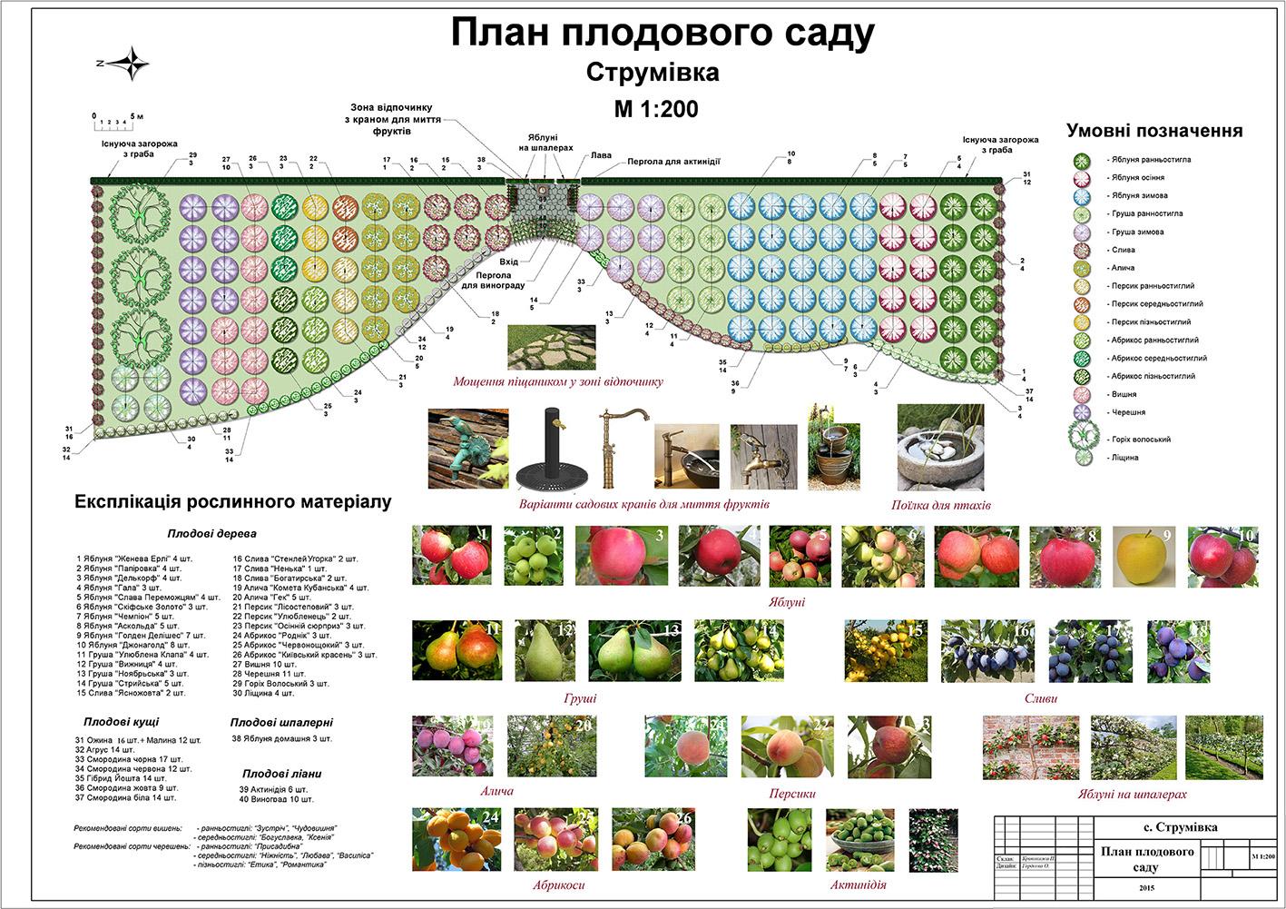 Планировка сада схемы фото