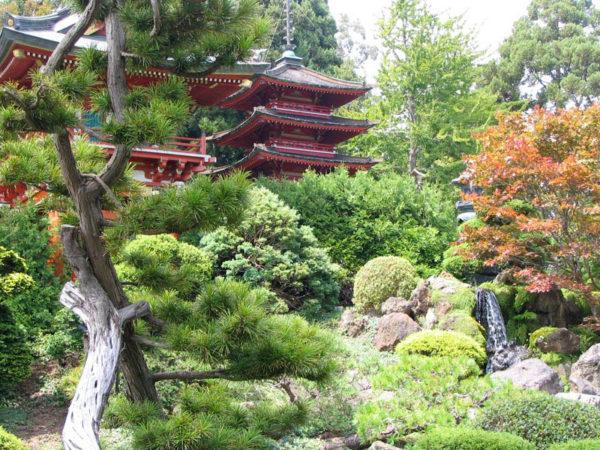 Японский чайный сад, США