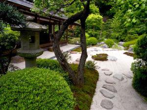 Чайный японский сад